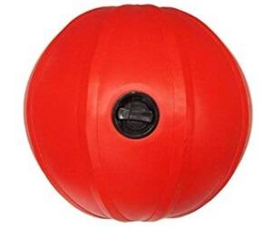 10.LINDSPORTS「ウォータートレーニングボール」