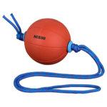 ニシスポーツ(NISHI) メディシンボール