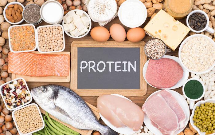筋トレ中に必要なタンパク質の量は何グラム?管理栄養士がタンパク質の多い食べ物や効果的な摂取方法を紹介