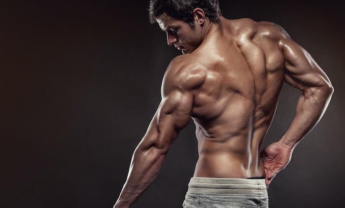 スミスマシンを使ったデッドリフトで鍛えられる筋肉