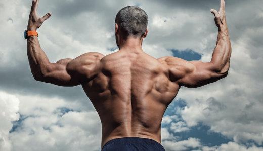脊柱起立筋を鍛える筋トレ8選!自重&ダンベルを使ったトレーニングで引き締まった背中を手に入れよう