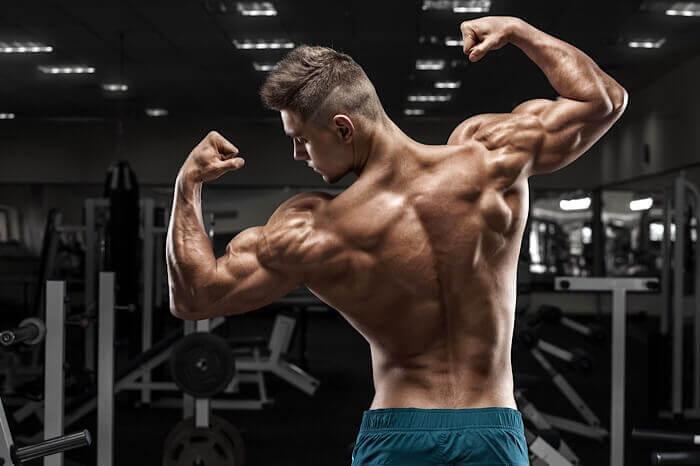 ハーフデッドリフトで鍛えられる筋肉