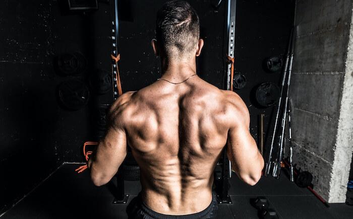 ワンハンドローイングで鍛えられる筋肉