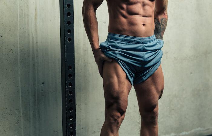 シシースクワットで効果的に鍛えられる筋肉