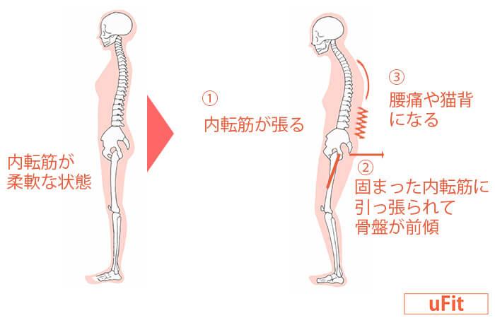 骨盤の位置が安定する