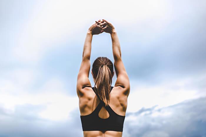 脊柱起立筋とはどんな筋肉?