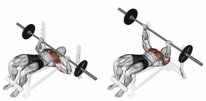 デクラインベンチプレスで鍛えられる筋肉