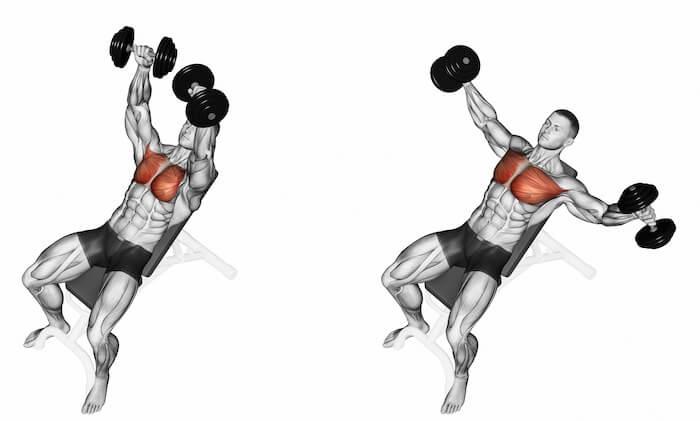 ダンベルフライで鍛えられる「大胸筋」の構造