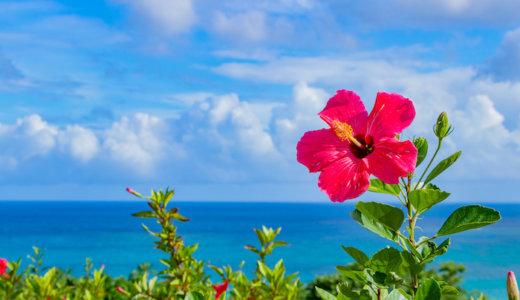 【2020年最新】沖縄でおすすめの人気パーソナルトレーニングジム13選!安い&女性向けのジムも合わせて紹介