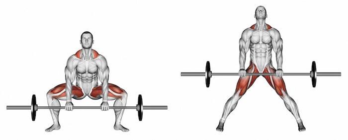 スモウデッドリフトで鍛えられる筋肉
