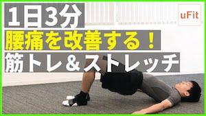 腰痛予防に効果的なストレッチ&体幹トレーニング【1日3分】